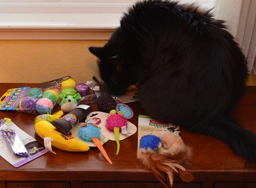 Raven-Christmas-2016-toys.jpg