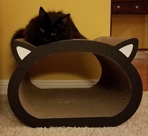 Raven CatFace Scratcher-01