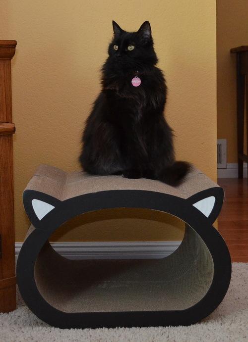 Raven CatFace Scratcher-13
