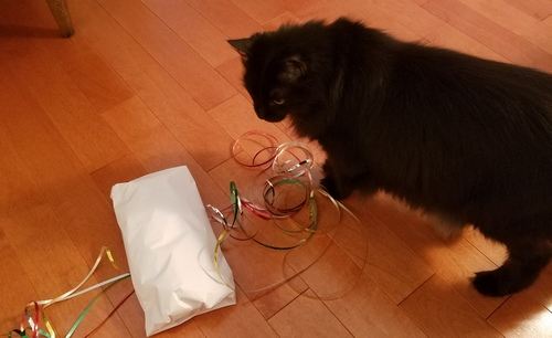Raven helping wrap gift