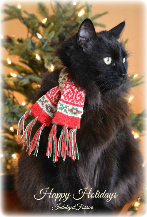 Raven Christmas