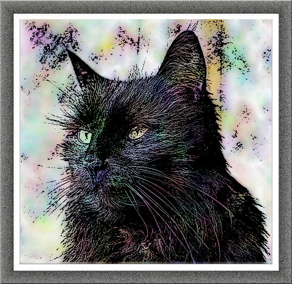 Raven art - turbulence