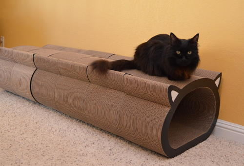 Raven resting on cat-face scratcher tunnel