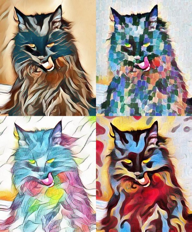 Art collage of Raven