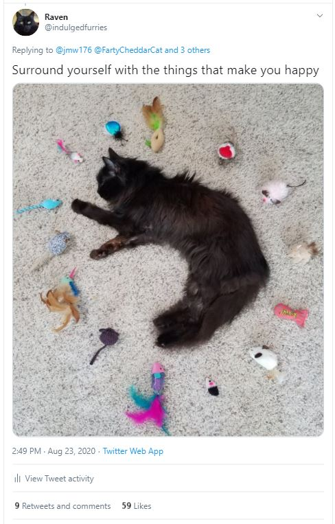 Raven surrounded by toys